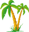 Ikonka uživatele Palmia